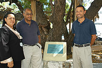 A plaque commemorating the first neem tree ever planted in the Cayman Islands was recently unveiled. (L-R) Minister of District Administration, Works, Lands and Agriculture, the Hon. Juliana O'Connor-Connolly, JP; Recreation Parks and Cemeteries Unit Director Jonathan Jackson, and former Director of Agriculture Dr. Joseph Jackman.